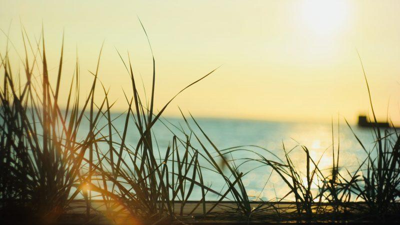 マーヤ ヨガ哲学 瞑想 呼吸法 沖縄